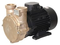 "1½"" Bronze Regenerative Turbine Motor Pump Unit"
